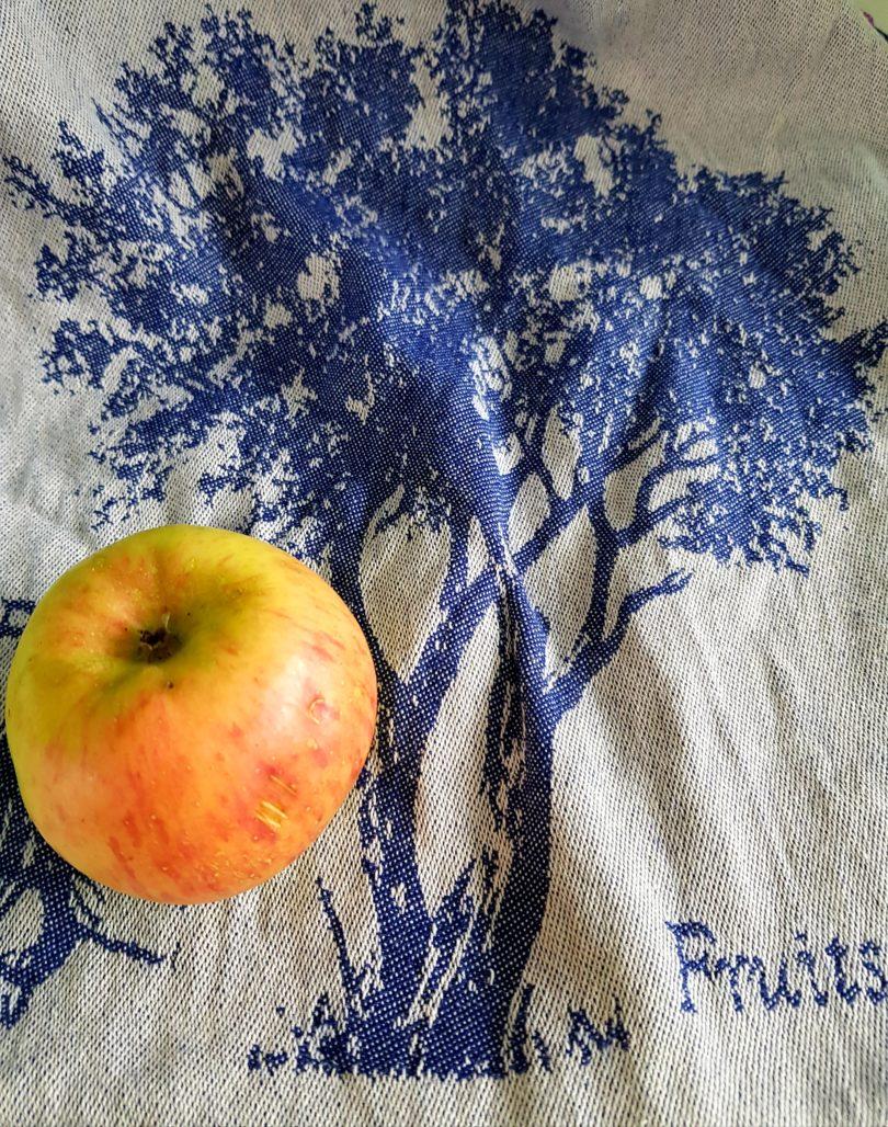 Apfelchips selbermachen - Apfel
