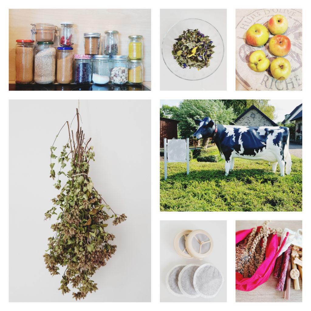 Plastikverpackungen sparen, Milchtankstelle, Kräuter ernten, Kaffeepads,Bio Tee