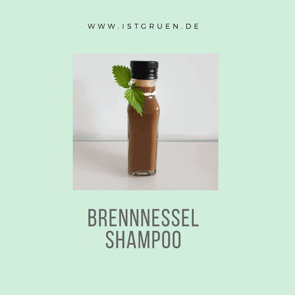 Brennnessel Shampoo selber machen