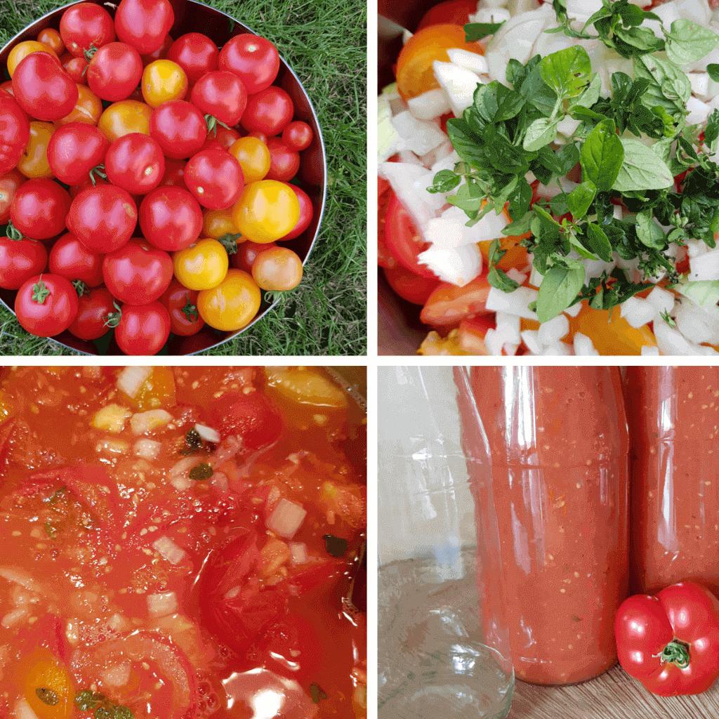 Tomatensoße aus frischen Tomaten